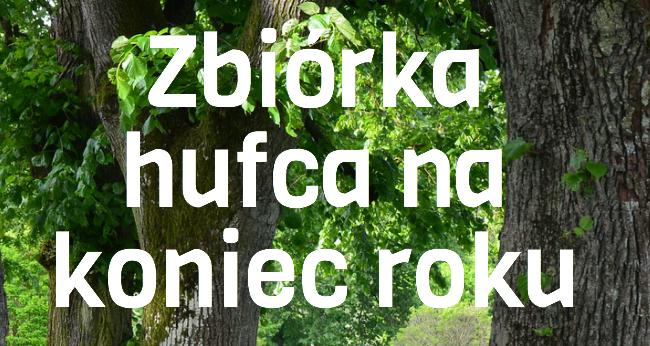 Zbiórka na koniec roku harcerskiego 2016/2017